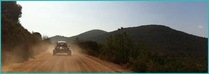 Algarve buggy tour