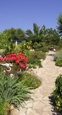lovely colourful gardens