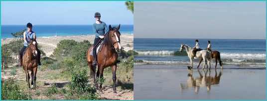 Algarve horse riding