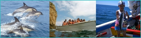 Lagos boat trips: dolphins, grotto trip, fishing