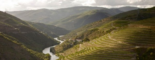 cycling in Douro