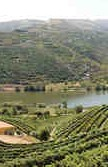 walks in the Douro