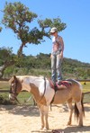 holistic horse riding