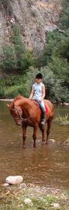 Gois pony trekking