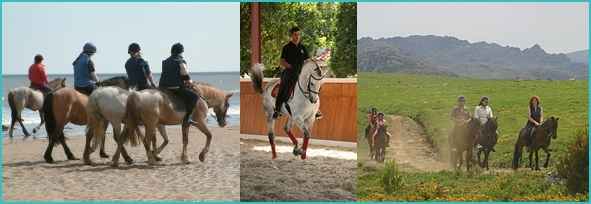 horse riding in Portugal