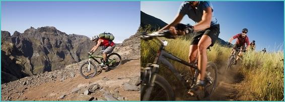 Madeira bike tour