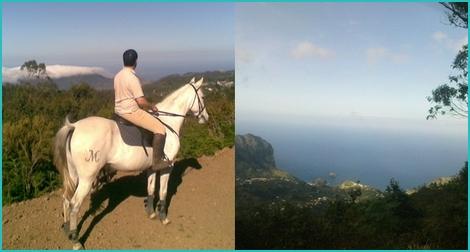 Madeira horse riding