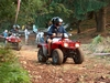 quad bikes in Madeira