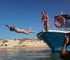 Ria Formosa boats