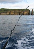 Sao Miguel Azores fishing