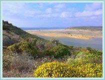The Alentejo coast