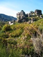 nature in Peneda Geres